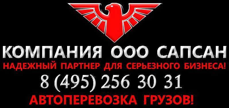 tk-sapsan-ttk-sapsan-logistik-banner-reclamma-0888-i-perevozchik-005